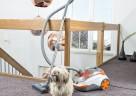 Der THOMAS CYCLOON HYBRID Pet & Friends wurde speziell für Tierhaushalte entwickelt.